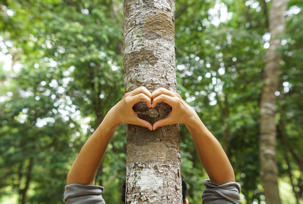 Qué puedo hacer por el medio ambiente