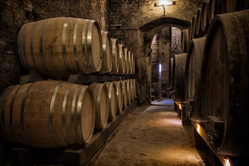 Visitar bodegas, la mejor manera de promocionar el consumo de vino entre nuestra población